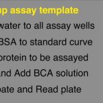 Tissue Prep for LCMS - Pt.2: BCA Assay