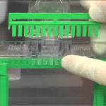 Pouring Acrylamide Gels for SDS-PAGE