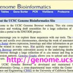 UCSC Visigene and Allen Brain Atlas