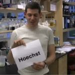 How Do You Say Hoechst?
